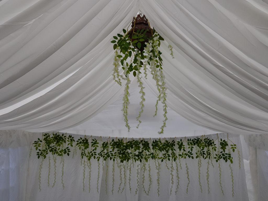 White backdrop with foliage